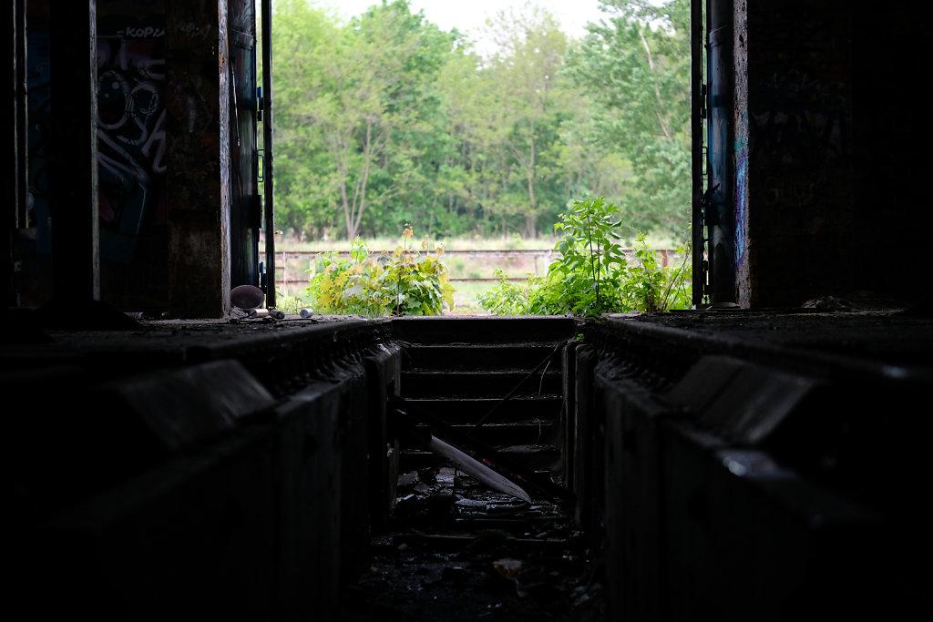 Looking Outside II